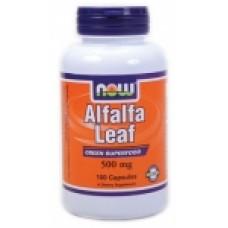 Alfalfa Leaf (Люцерна) 500 мг - 100 капсули Now За намаляване на холестерола