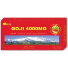 Здравословна подкрепа за организма Годжи Бери (Лиций с мед) 4000