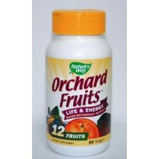 Плодов антиоксидант -450 mg