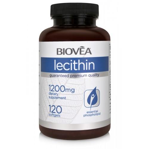 LECITHIN 1200mg 120 Softgels - подобрява мозъчната функция*