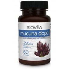 MUCUNA DOPA 100mg 60 Capsules - повишава енергията и настроението