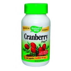 Червена боровинка плод - за функцията на пикочо-половия тракт