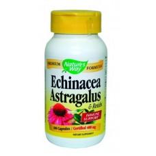 Ехинацея с Астрагалус и Рейши - при остри възпалителни процеси