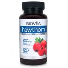 HAWTHORN 300mg 120 капсули - за сърдечно-съдовата система
